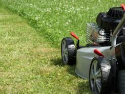 Best Gas Lawn Mowers