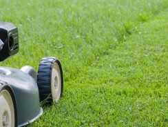 Lawn Mowing Tips for a Healthy Lawn