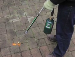 Best Weed Torches